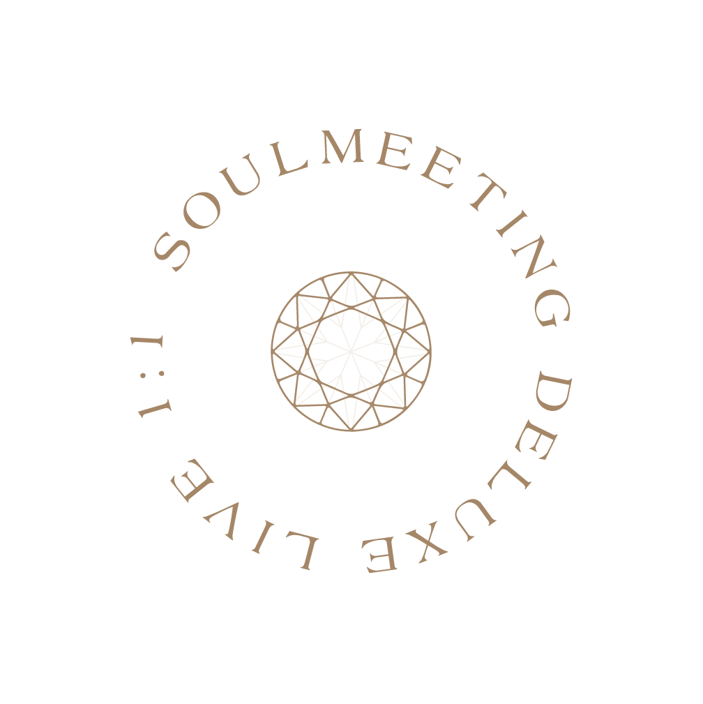 Soulguiding - Souldmeeting Deluxe live 1-1